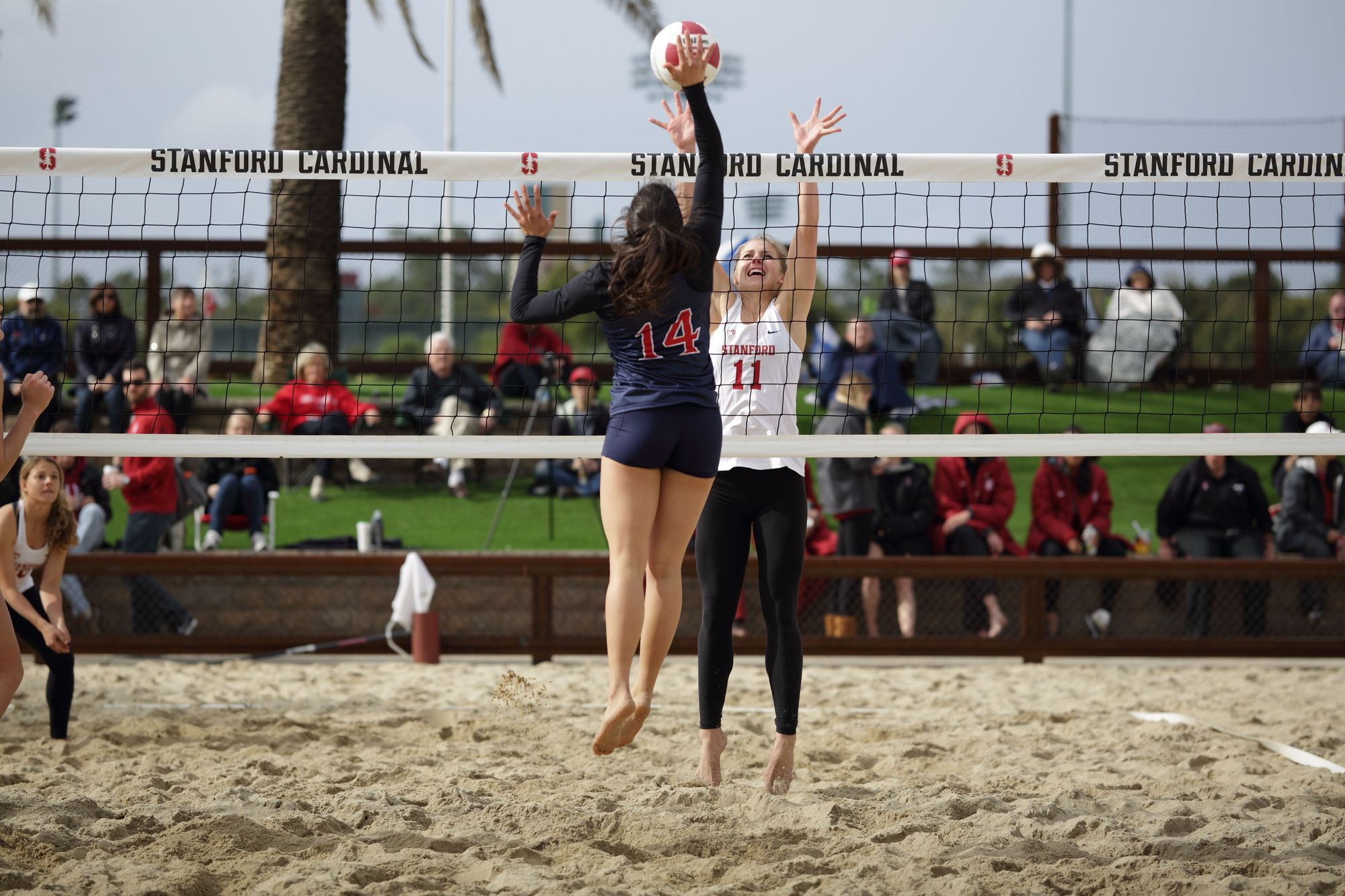 Beach Volleyball Rules: How The Sand Differs From Indoor Volleyball