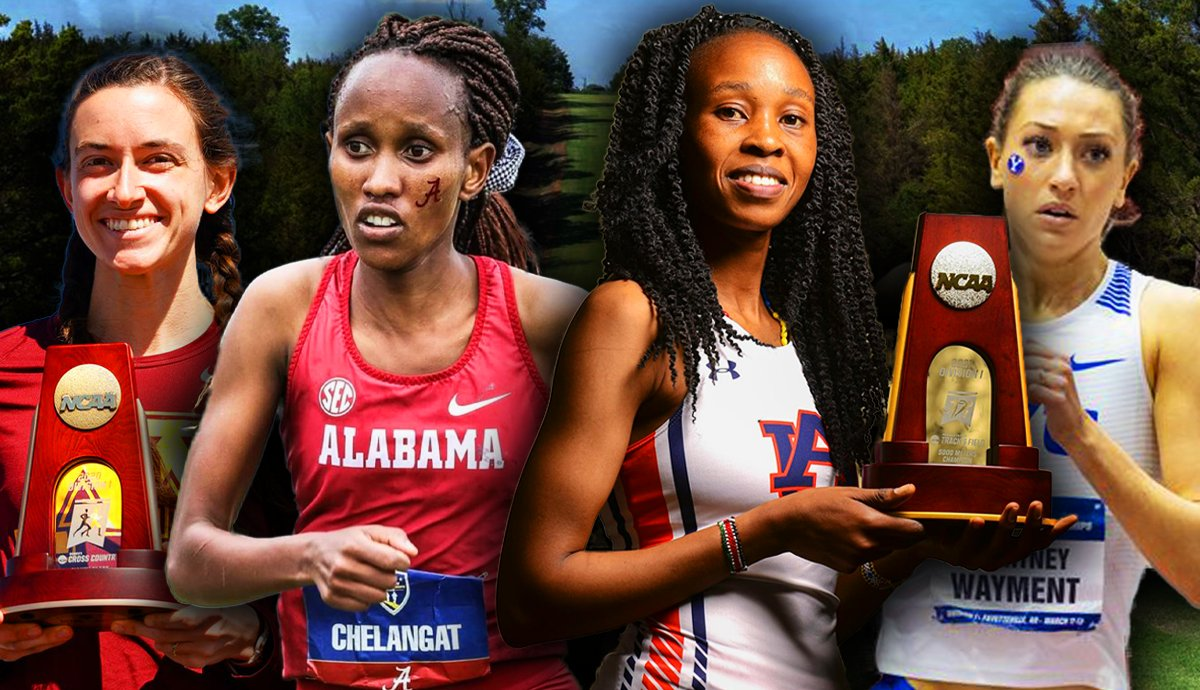 Women's Cross Country: Who Are The Top Runners In Division I